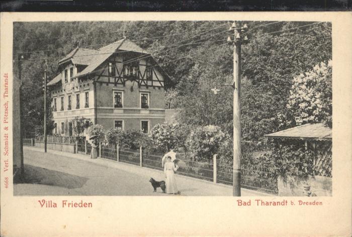 Tharandt Tharandt Villa Frieden * / Tharandt /Saechsische Schweiz-Osterzgebirge LKR