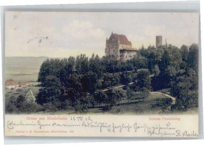 Mindelheim Schloss Freundsberg x