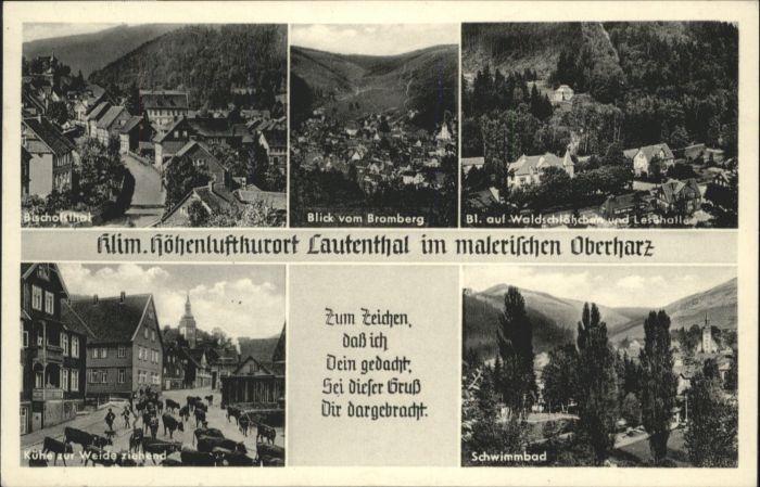Lautenthal Harz Schwimmbad Waldschloesschen Bischofsthal x