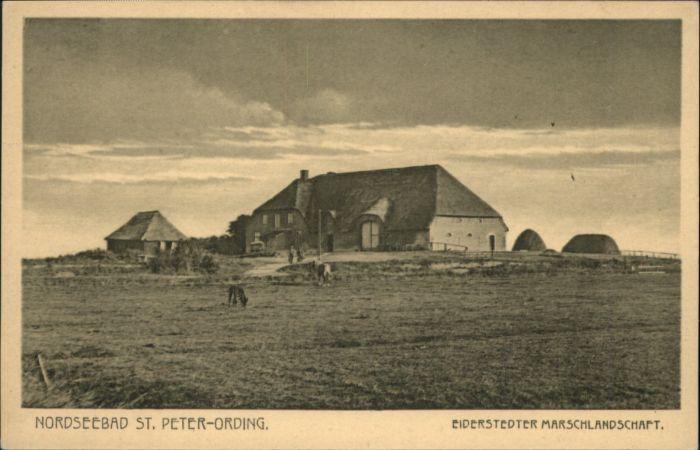 St Peter-Ording St Peter-Ording Eiderstedter Marschlandschaft * / Sankt Peter-Ording /Nordfriesland LKR