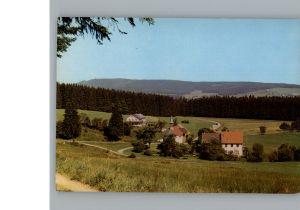 Lenzkirch Gasthaus Gruenwald / Lenzkirch /Breisgau-Hochschwarzwald LKR