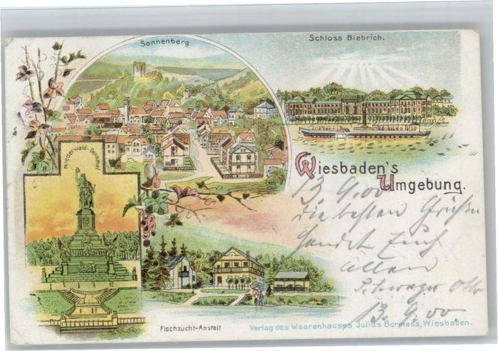 Wiesbaden Sonnenberg Schloss Biebrich Fischzucht-Anstalt x