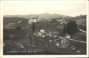 Birkfeld  / Birkfeld /Oststeiermark