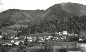 Ebenau Salzburger Land / Ebenau /Salzburg und Umgebung