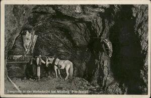 Moedling Seegrotte Hinterbruehl Pferdestall / Moedling /Wiener Sueden