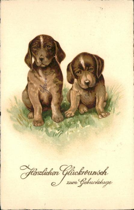 Hunde Geburtstag Tiere Nr Wf46968 Oldthing Ansichtskarten