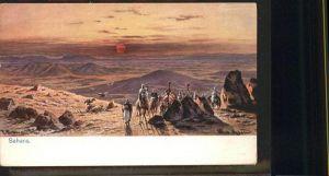 Sahara Kamel Kuenstler F Perlberg / Afrika /