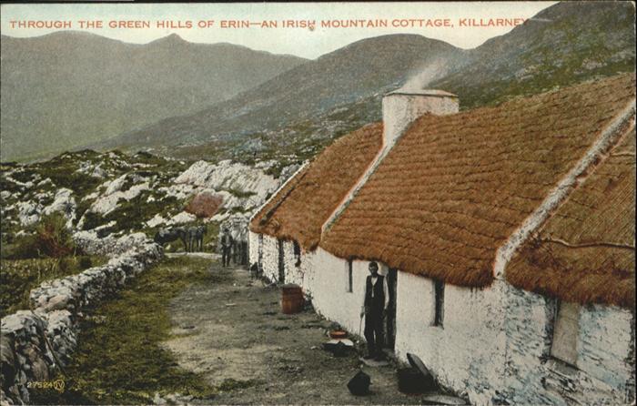Killarney Kerry Green Hills of Erin Irish Mountain Cottage / Killarney /