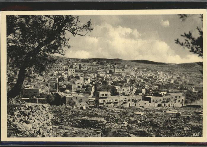 Hebron West Bank  / Hebron /
