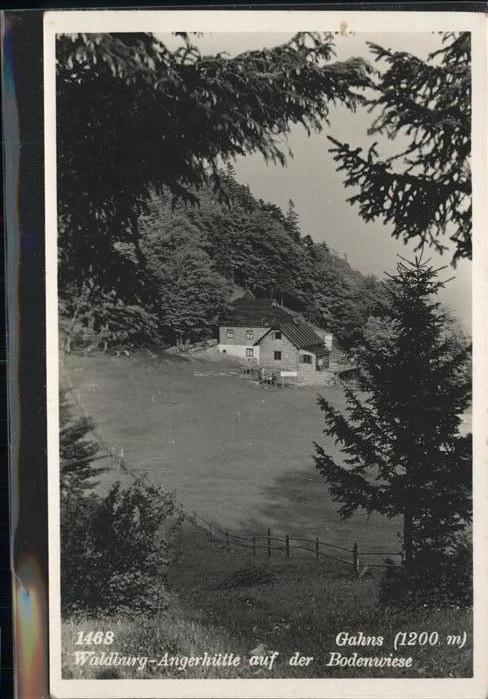 Gahns Berg Waldburg Angerhuette Bodenwiese / Oesterreich /