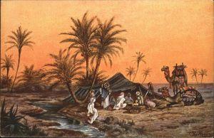 Aegypten Kuenstler F Perlberg Kamel / Aegypten /