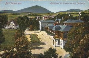 Bad Salzbrunn Wiesenhaus Elisenhalle Hochwald x