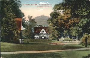 Bad Salzbrunn Wiesenhaus Hochwald x