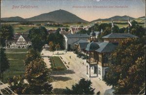 Bad Salzbrunn Elisenhalle Wiesenhaus Hochwald x