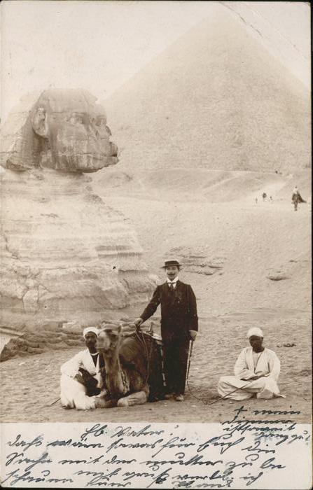 Cairo Egypt Pyramide Kamel