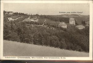 Grimmenstein Edlitztal Volksheilstaette /  /