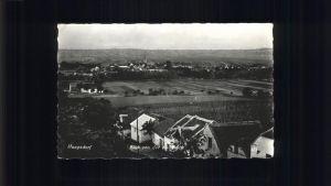 Haugsdorf  Kat. Haugsdorf