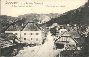 Aflenz Kurort Starizen Seewiesen Kains Gasthof zur Post Kat. Aflenz Kurort