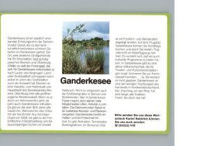Ganderkesee  / Ganderkesee /Oldenburg LKR