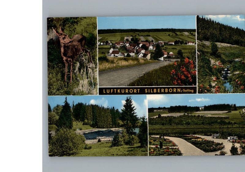 Silberborn  / Holzminden /Holzminden LKR