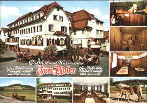 Waldbrunn Odenwald Gasthof Kurpension Zum Adler Pony Kutsche Pferde Kat. Waldbrunn
