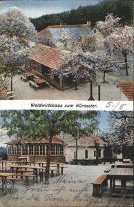 Bad Fischau-Brunn Waldwirtschaft zum Kuerassier / Bad Fischau-Brunn /Niederoesterreich-Sued