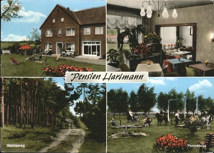 Laer Steinfurt Pension Hartmann / Laer /Steinfurt LKR