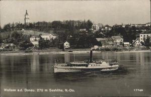 Wallsee-Sindelburg Schiff Kat. Wallsee-Sindelburg