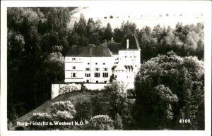 Feistritz Wechsel Burg Kat. Feistritz am Wechsel
