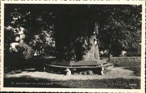 St Georgen Attergau Bank Baum Kat. Voecklabruck