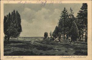 Lueneburger Heide Landschaft bei Lutterloh Kat. Walsrode