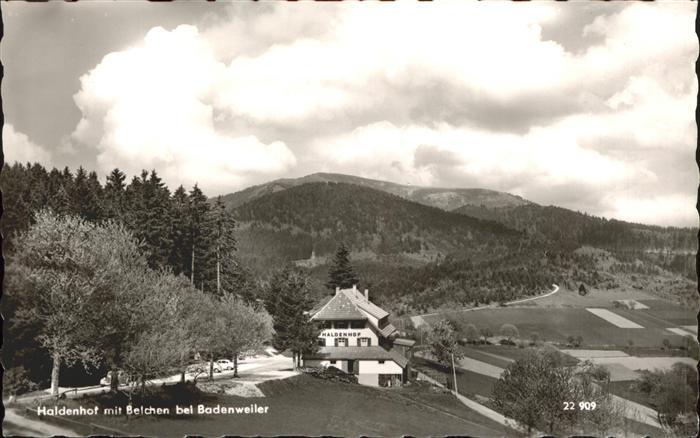 Badenweiler Haldenhof mit Blick zum Belchen Kat. Badenweiler