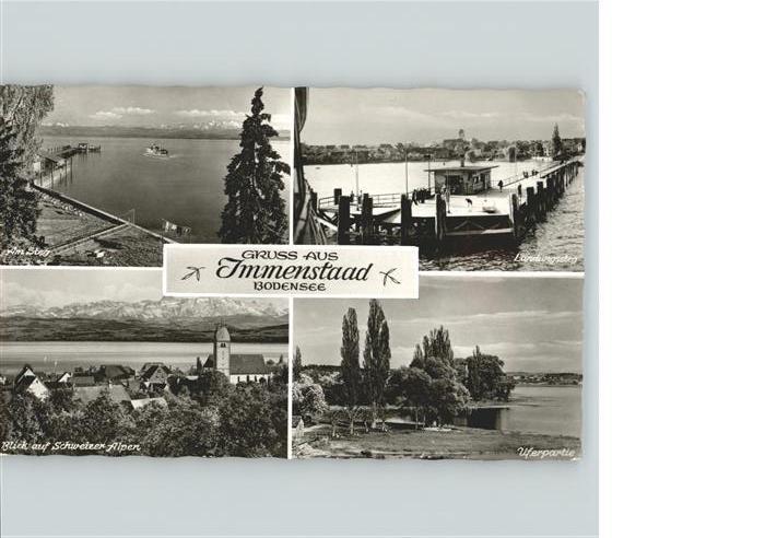 Immenstaad Bodensee Panorama mit Blick auf Schweizer Alpen Landungssteg Uferpartie Kat. Immenstaad am Bodensee