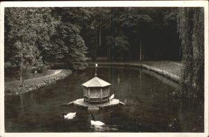 Donaueschingen Partie im Schlosspark Ententeich Feldpost Kat. Donaueschingen
