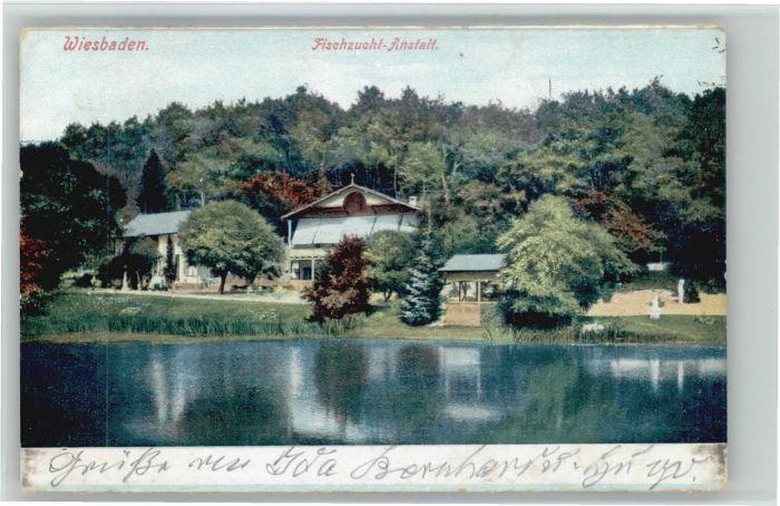 Wiesbaden Fischzucht-Anstalt x