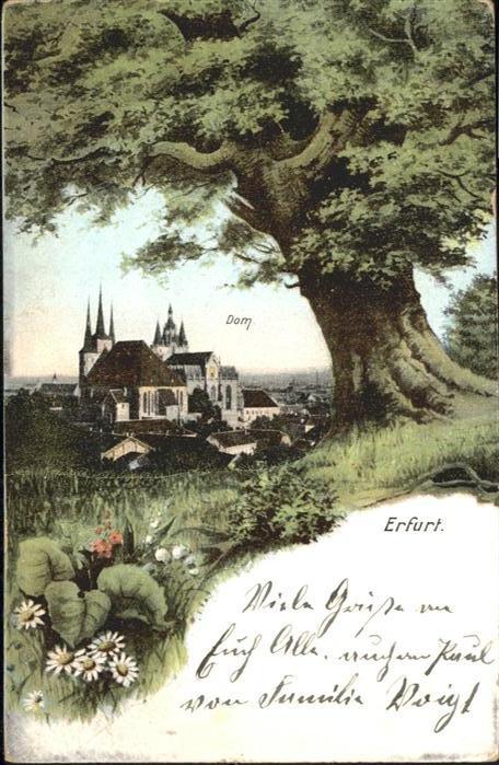 Erfurt Dom / Erfurt /Erfurt Stadtkreis