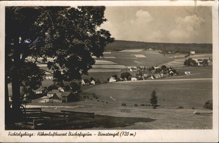 Bischofsgruen Birnstengel