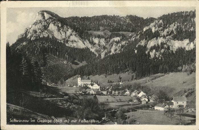 Schwarzau Gebirge Falkenstein Kat. Schwarzau im Gebirge