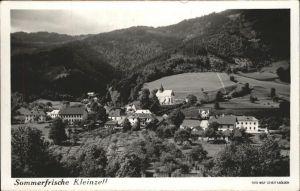 Kleinzell Hainfeld  / Lilienfeld /Niederoesterreich-Sued