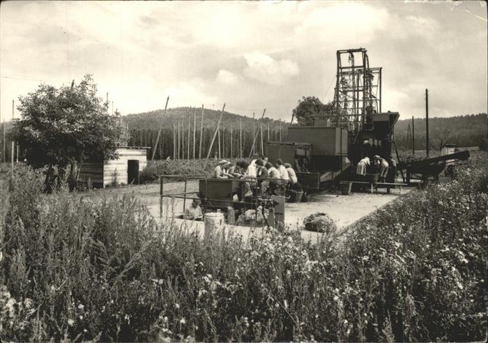 Landwirtschaft Kartoffelernte Tschechien Kat. Landwirtschaft