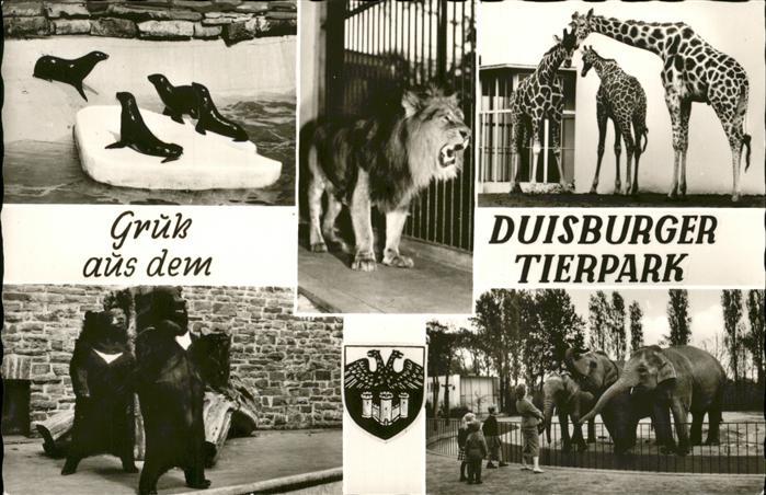 Zoo Duisburg Tierpark Loewe Giraffen Elefanten Kat. Tiere