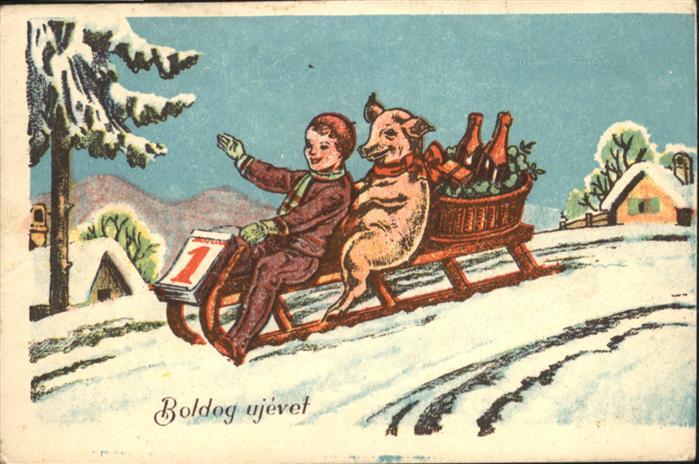 Neujahr Schlitten Kind Schwein  / Greetings /