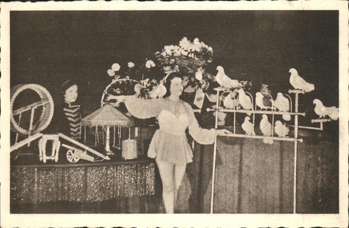 Zirkus Tauben Kat. Zirkus