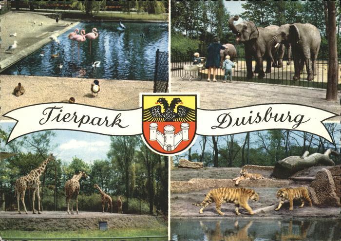 Zoo Duisburg Elefanten Giraffen Tiger Flamingos  Kat. Tiere