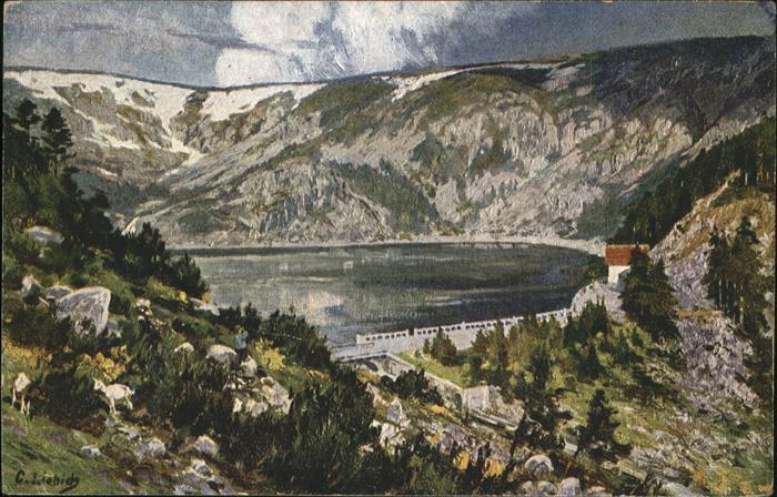 Liebich C. Schwarzer See Kat. Kuenstlerlitho