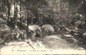 Huelgoat Huelgoat Mare Sangliers * / Huelgoat /Arrond. de Chateaulin