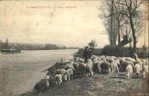 Saint-Pierre-d Autils Saint-Pierre-d'Autils Seine Metreville Schafe Dampfer *