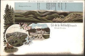 Col de la Schlucht Honeck Hotel Defranoux *