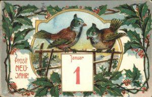 Datumskarte Neujahr Voegel Kat. Besonderheiten