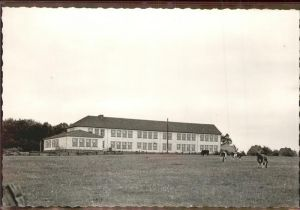 Hohenwestedt Schule Kuehe Kat. Hohenwestedt